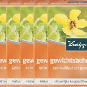 Kneipp Thee Gewichtsbeheersing Voordeelverpakking 6x15stuk